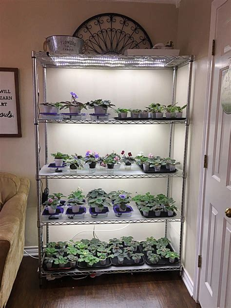 Diy Indoor Grow Shelves