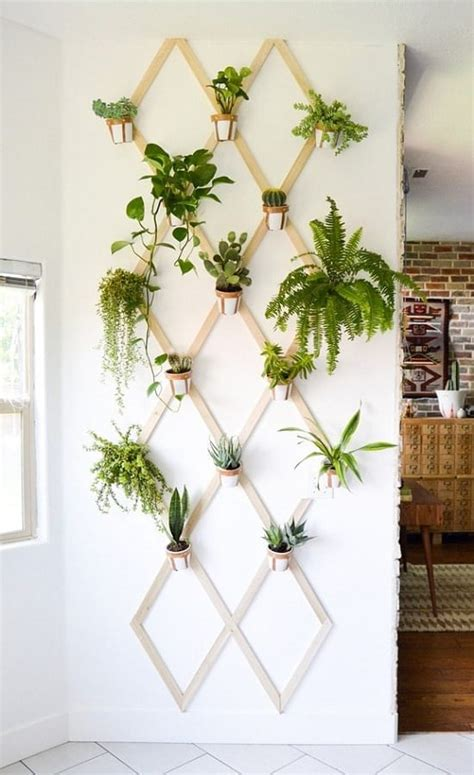 Diy Indoor Plant Projects