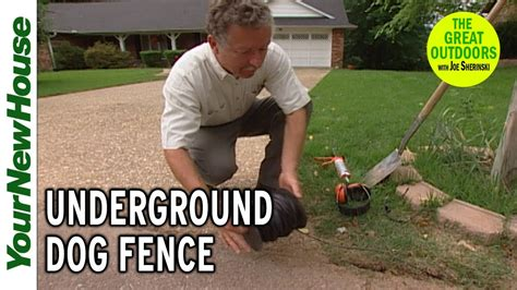 Diy Invisible Dog Fence Reviews