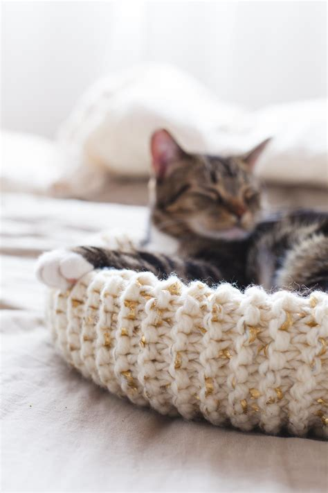 Diy Knitted Cat Bed