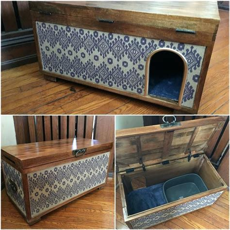Diy Litter Box Enclosure Pinterest