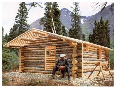 Diy Log House Building