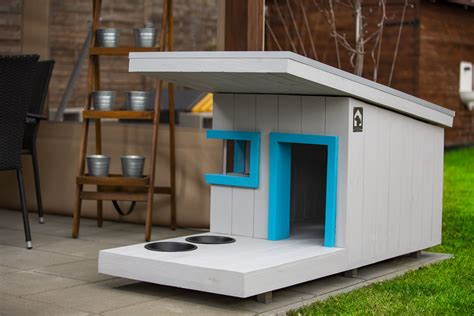 Diy Modern Dog House