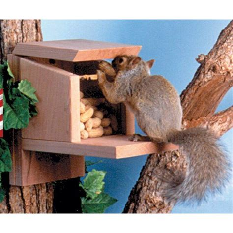 Diy Munch Box Squirrel Feeder