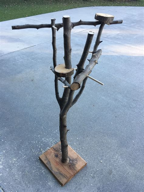 Diy Natural Wood Perches For Cockatiels