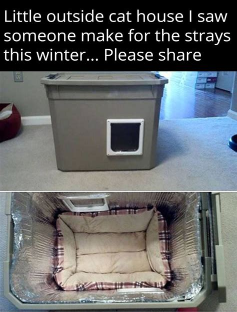 Diy Outdoor Cat Beds