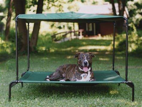 Diy Outdoor Dog Bed With Canopy