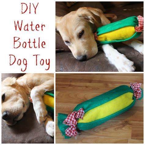 Diy Outdoor Toy Ideas For Dogs