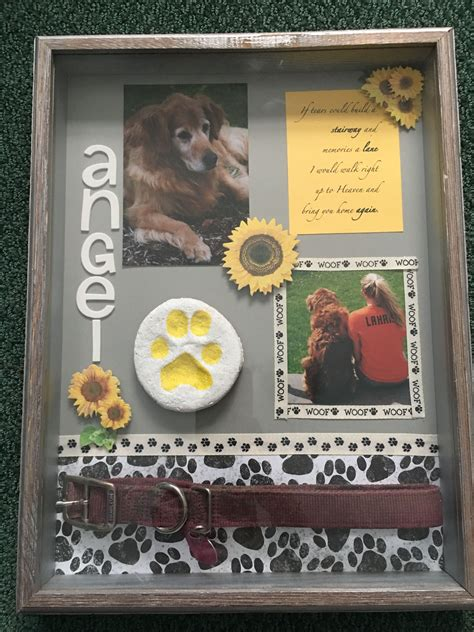 Diy Pet Shadow Box