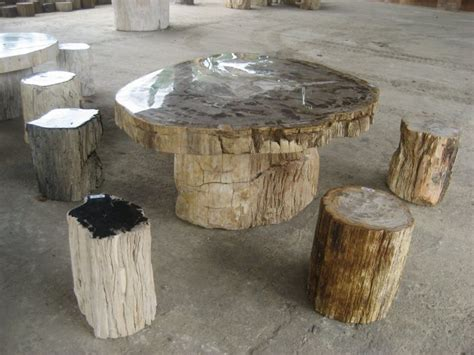 Diy Petrified Wood Table
