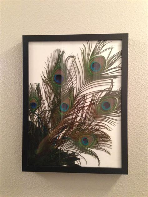 Diy Picture Frame Ideas With Peacock Feathers