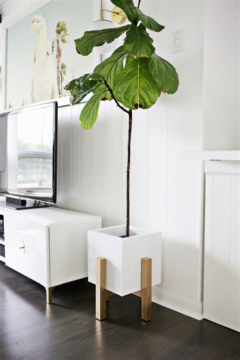 Diy Plant Stand With Just Glue Baking