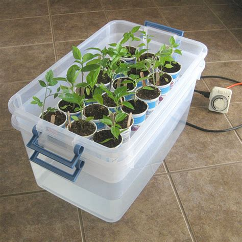 Diy Plant Waste Water Tray