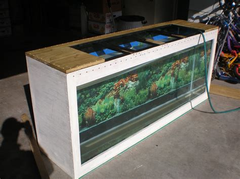 Diy Plywood Aquarium