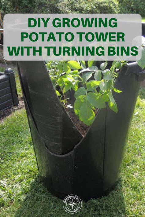 Diy Potato Growing Bin