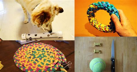 Diy Puppy Toys To Keep Them Occupied