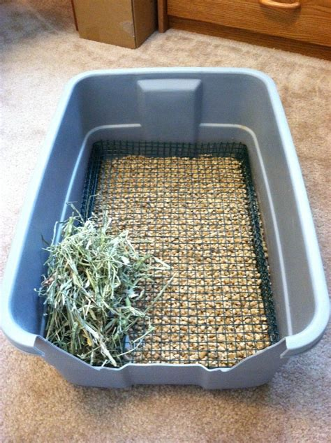 Diy Rabbit Litter Box