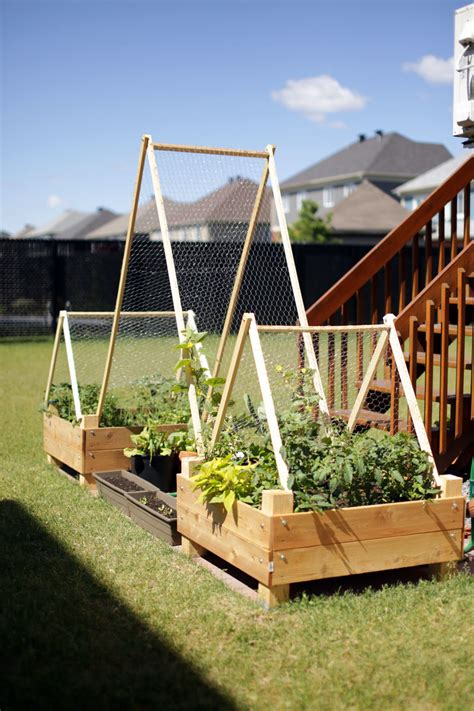 Diy Raised Garden Box With Trellis Plans