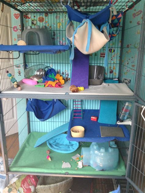 Diy Rat Cage Ideas