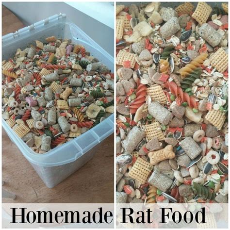 Diy Rat Food