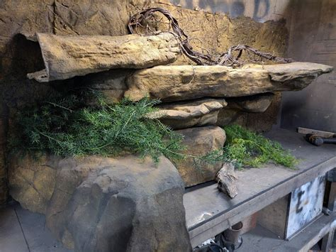Diy Reptile Ledge