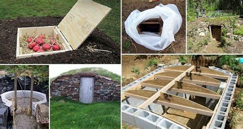 Diy Root Cellar Kits