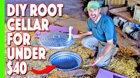 Diy Root Cellar Youtube