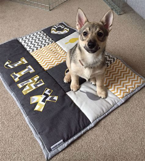Diy Silicone Heated Bed For Dogs