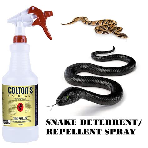 Diy Snake Repellent Spray