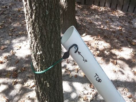 Diy Squirrel Trap Box