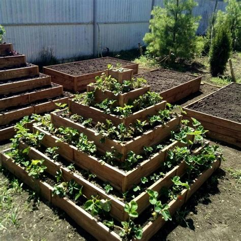 Diy Strawberry Bed