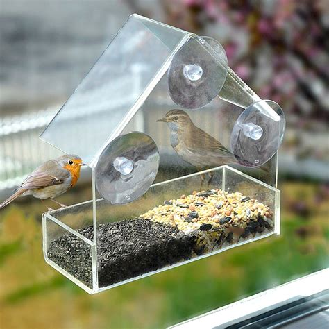 Diy Suction Cup Bird Feeder