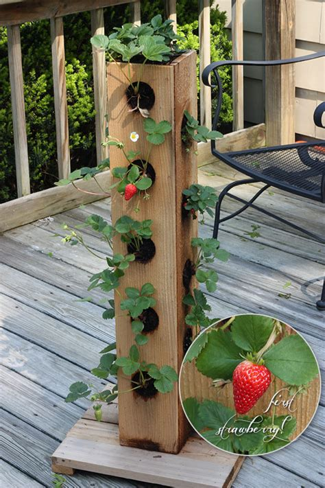 Diy Tower Vegetable Garden