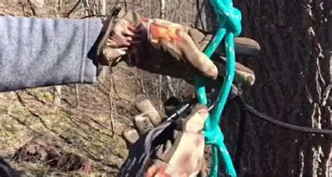Diy Tree Stand Safety Line