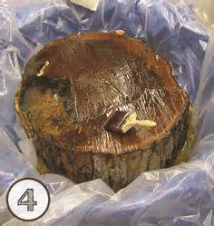Diy Tree Wood Wound Sealer Powder