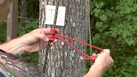Diy Treestand Safety Line