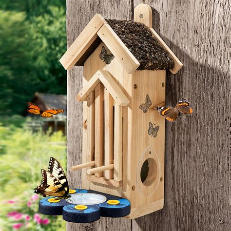 Diy Unfinished Wood Butterfly Houses How To Build