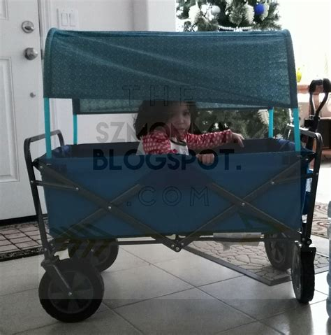 Diy Wagon Canopy