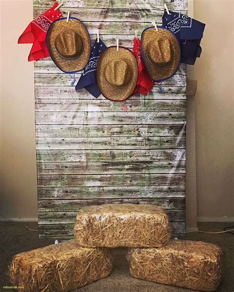 Diy Western Decor