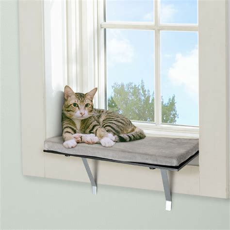 Diy Window Seat For Cats