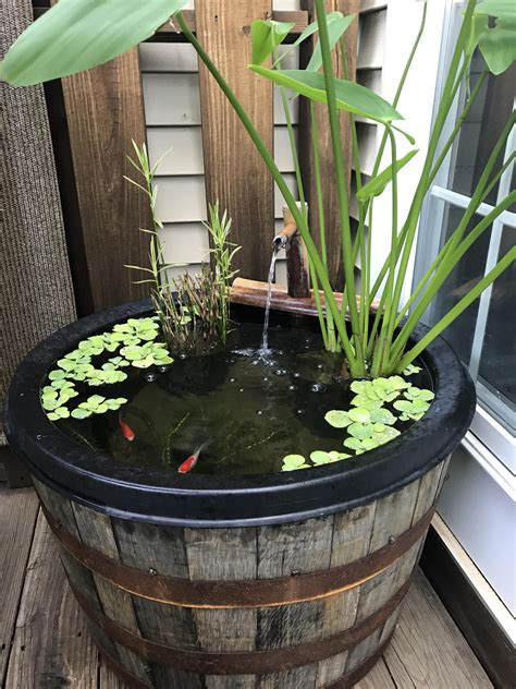 Diy Wine Barrel Pond
