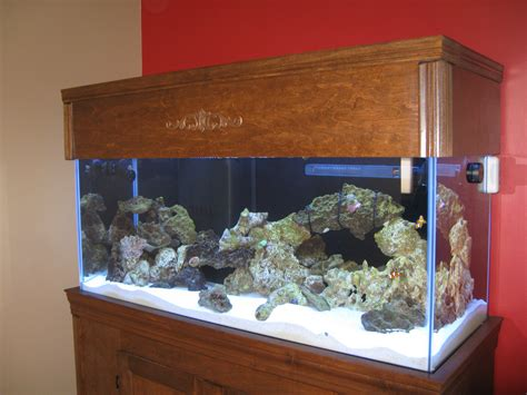 Diy Wood Aquarium Canopy