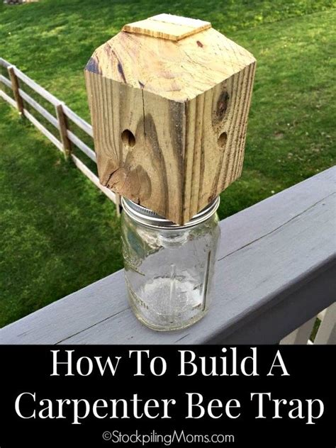 Diy Wood Bee Trap