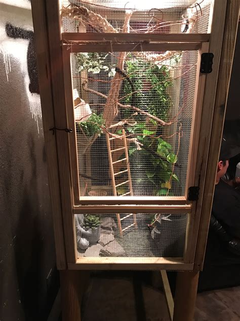 Diy Wood Chameleon Cage Accessories