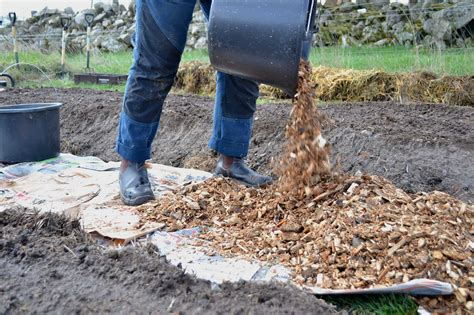 Diy Wood Chip Pathways