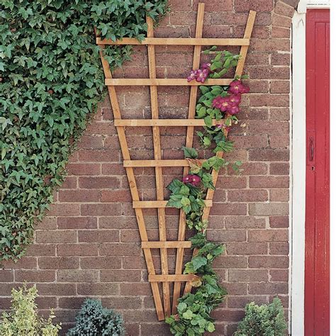 Diy Wood Fan Trellis