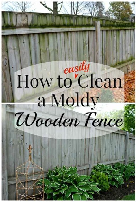 Diy Wood Fence Cleaning