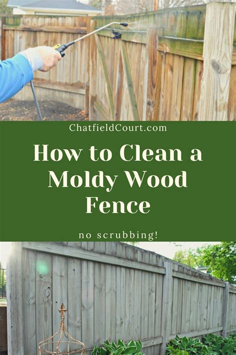 Diy Wood Fence Cleaning Solution