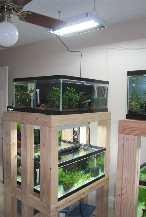 Diy Wood Fish Tank Rack