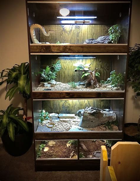 Diy Wood Snake Enclosure